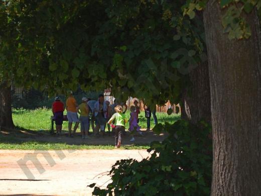 дети летом среди зелени